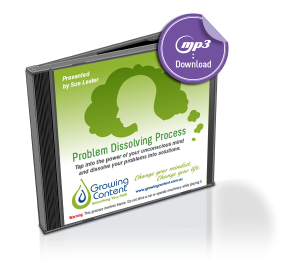 Problem Dissolving Process